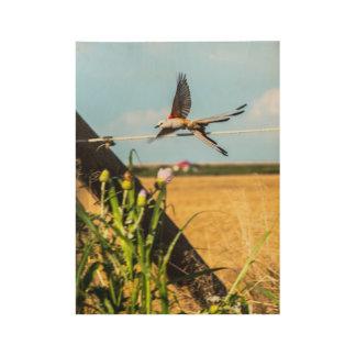 Scissor-tailed Swallow Flycatcher Wood Wall Art Wood Poster