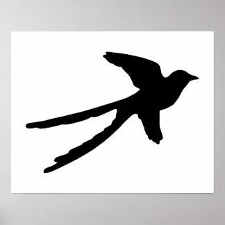 Scissortail Flycatcher Poster