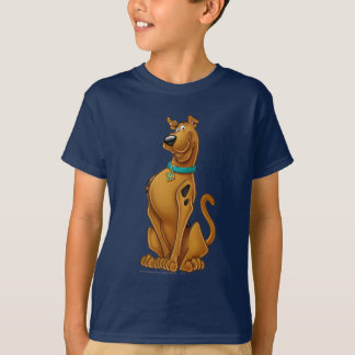 Scooby Doo Airbrush Pose 1 T Shirts