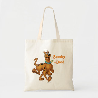 Scooby Doo Airbrush Pose 3 Budget Tote Bag
