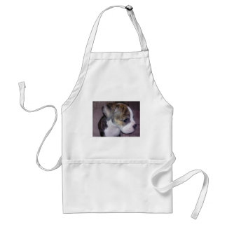Scooby Doo Standard Apron
