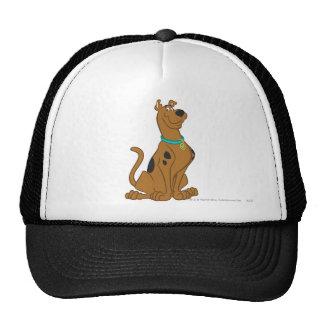 Scooby Doo | Classic Pose Cap