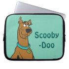 Scooby Doo Pose 27 Laptop Sleeve