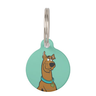 Scooby Doo Pose 27 Pet Name Tag