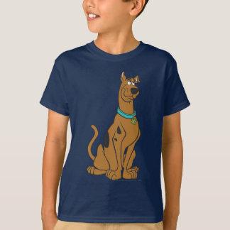 Scooby Doo Pose 27 Shirts