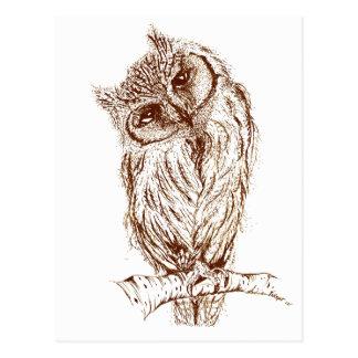 Scops owl by Inkspot Postcard