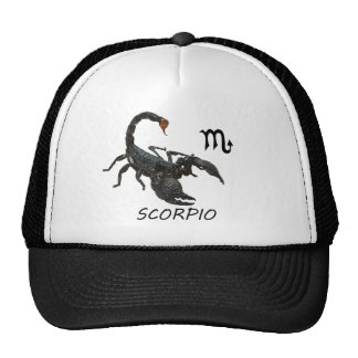 Scorpio astrology cap