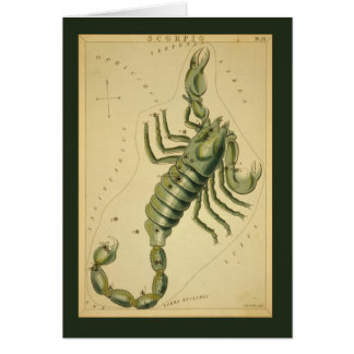 Scorpio Constellation Card