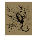 Scorpio Constellation Hevelius 1690 Decor Poster