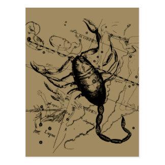 Scorpio Constellation Hevelius 1690 Oct23 -Nov 21 Postcard