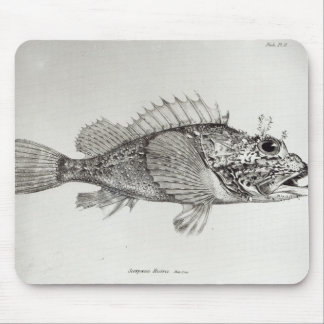 Scorpion Fish Mouse Mat