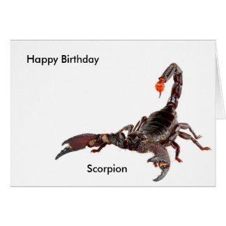 Scorpion image for Birthday-greeting-card Card