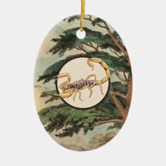Scorpion In Natural Habitat Illustration Christmas Ornament