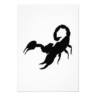 Scorpion Announcement