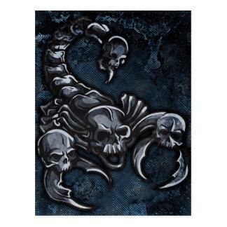 Scorpion Post Card
