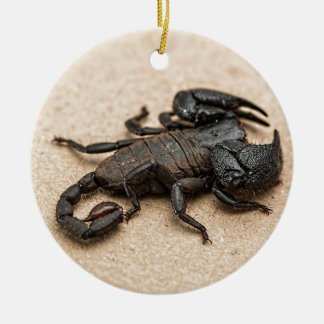 Scorpion Round Ceramic Decoration