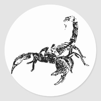 Scorpion - Sticker