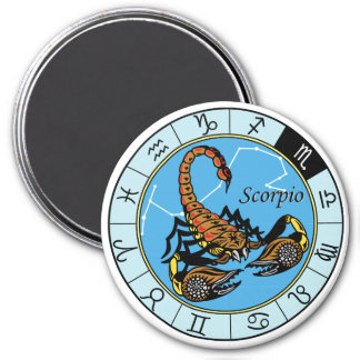 scorpion zodiac magnet