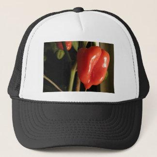 Scotch Bonnet Chilli HOT STUFF Trucker Hat