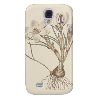 Scotch Crocus Botanical Illustration Galaxy S4 Case