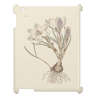 Scotch Crocus Botanical Illustration iPad Covers