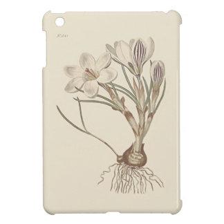 Scotch Crocus Botanical Illustration iPad Mini Case