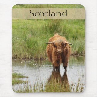Scotland Highland Cow in Water Photo Mouse Mat