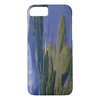 Scotland, Highland, Wester Ross, Loch Garry. An iPhone 8/7 Case