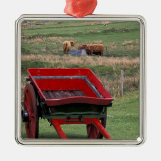Scotland, Isle of Skye, Kilmuir. Farm animals Silver-Colored Square Decoration