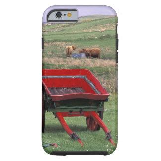 Scotland, Isle of Skye, Kilmuir. Farm animals Tough iPhone 6 Case