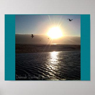 Scott Creek Beach Sunset Poster