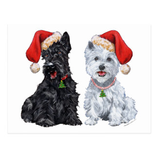 Scottie and Westie Caroling Post Cards