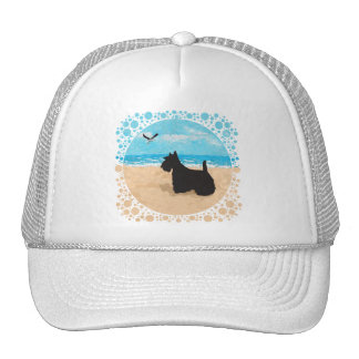Scottie at the Beach with Seagull Mesh Hats