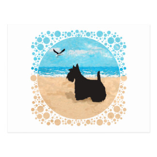 Scottie at the Beach with Seagull Post Card