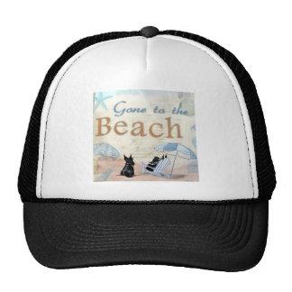 Scottie Beach Mesh Hat