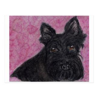 Scottie Dog Scottish Terrier postcard send collect