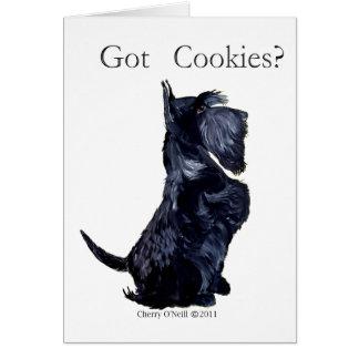 Scottie - Got Cookies Cards