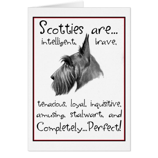 Scottie Perfection greeting card