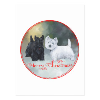 Scottie Westie  Christmas Postcard