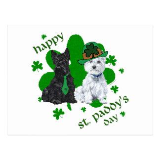 Scottie & Westie St. Paddy's Day Postcard