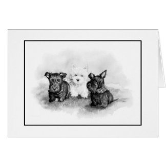 Scotties and Westie trio Card