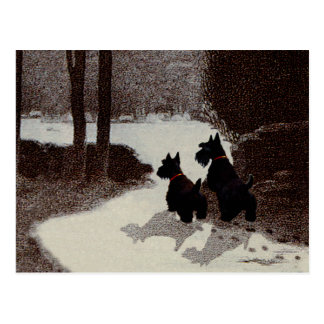 Scotties on Surreal Winter Night Postcards