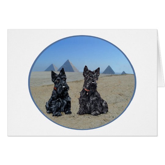 Scotties Sightseeing in Egypt Card