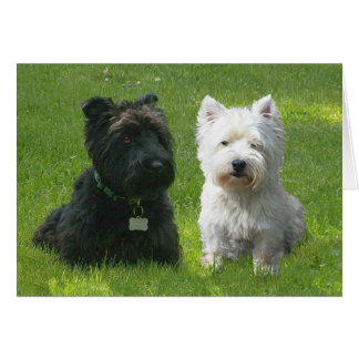 Scottish and West Highland Terriers Greenwood Greeting Card