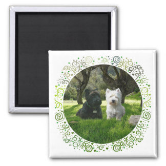Scottish and West Highland Terriers Greenwood Square Magnet