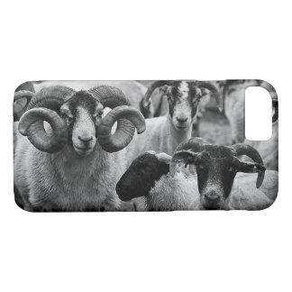 Scottish Blackface, Black & White iPhone 7 Case