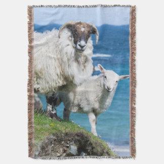 Scottish Blackface on the Isle of Harris Throw Blanket