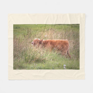 Scottish cow blanket