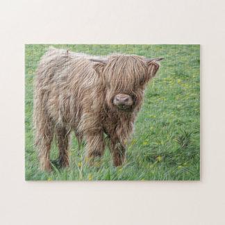 Scottish cow photograph jigsaw puzzle