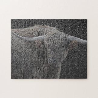 Scottish cow photograph puzzle